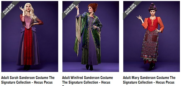 Women's Hocus Pocus Sanderson Sisters Costumes