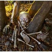 Skeleton Bones Party Game