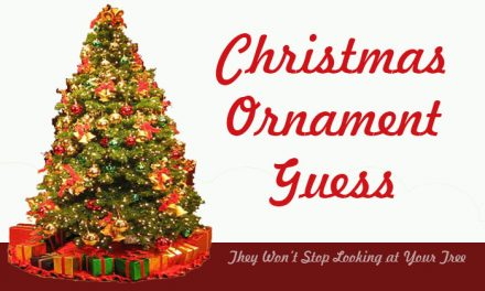 Christmas Ornament Guess