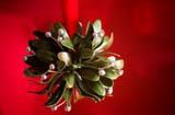 Mistletoe Madness Murder Mystery