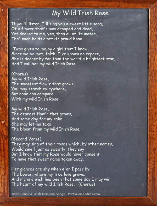 My Wild Irish Rose Song Lyrics