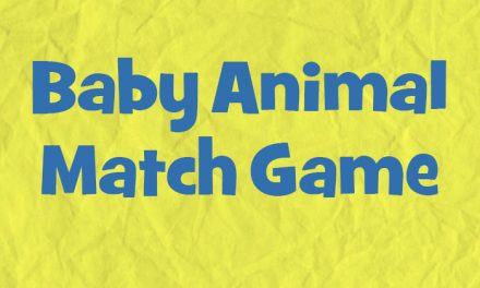 Baby Animal Match Game