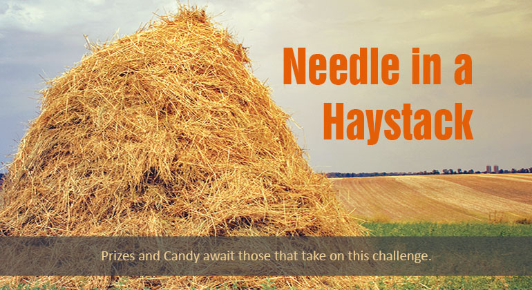 Needle in a Haystack Game